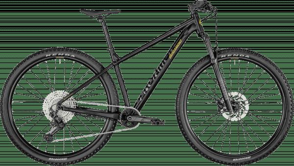 Bergamont Revox 7 2021 - Sort